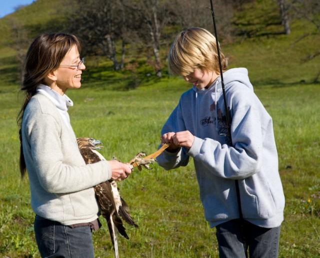 Friends of Rowena Wildlife Clinic Fund
