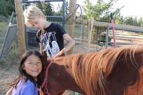 Silent Wave Horse Rescue